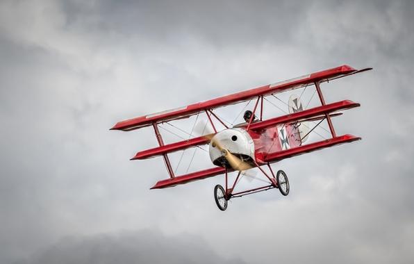 Картинка авиация, армия, самолёт, красный барон, триплан