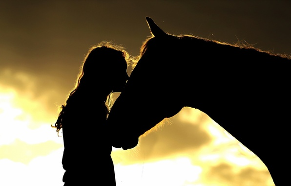 Картинка девушка, конь, силуэты