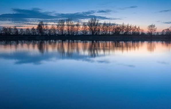 Картинка небо, вода, облака, закат, озеро, гладь, отражение, голубое, тишина, вечер, Деревья, ряд