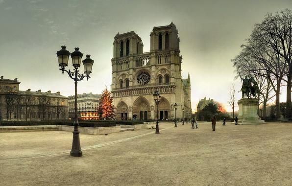 Картинка зима, Франция, Париж, елка, площадь, фонари, Новый год, ёлка, Paris, Собор Парижской Богоматери, France, Notre ...