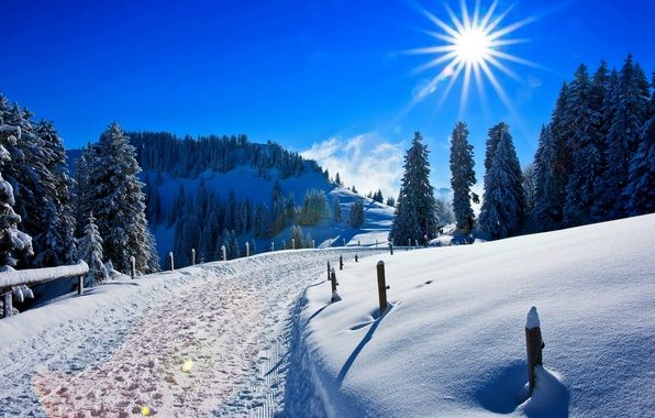 Картинка зима, лес, небо, солнце, снег, пейзаж, горы, природа, парк, дороги, white, forest, road, sky, landscape, …