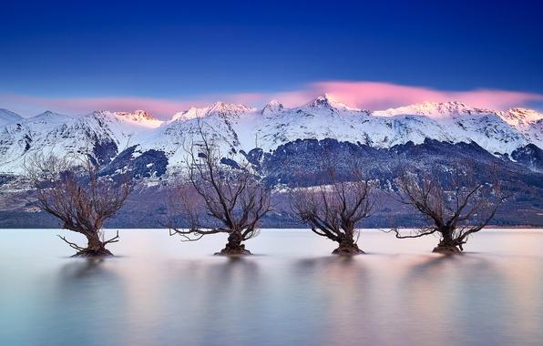 Картинка деревья, горы, озеро, Новая Зеландия, New Zealand, Queenstown, Lake Wakatipu, Куинстаун, озеро Уакатипу, Южные Альпы, …
