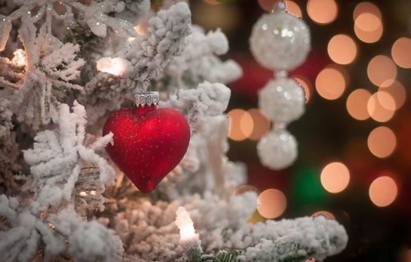 Картинка снег, ветки, праздник, игрушка, сердце, елка, новый год