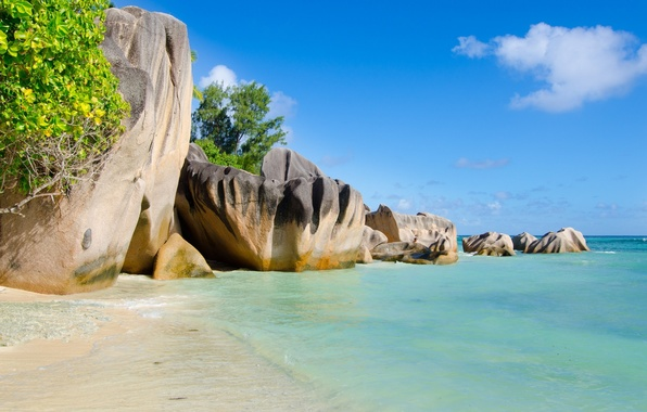 Картинка море, деревья, пейзаж, природа, тропики, скалы, trees, sea, landscape, nature, rocks, tropics
