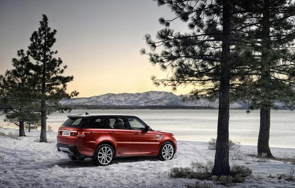 Картинка зима, деревья, фото, Land Rover, Range Rover, автомобиль, Range Rover Sport, бордовый