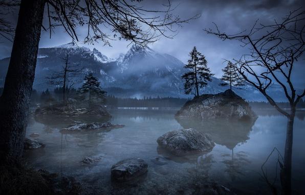 Картинка деревья, горы, ночь, природа, озеро, вечер