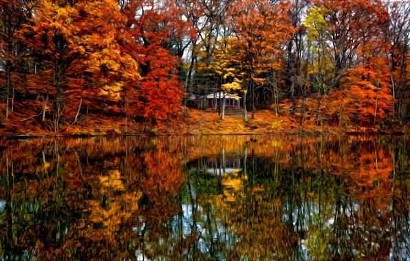 Картинка осень, лес, деревья, пейзаж, вилла, дома, Природа, house, forest, архитектура, trees, landscape, nature, autumn, view, …