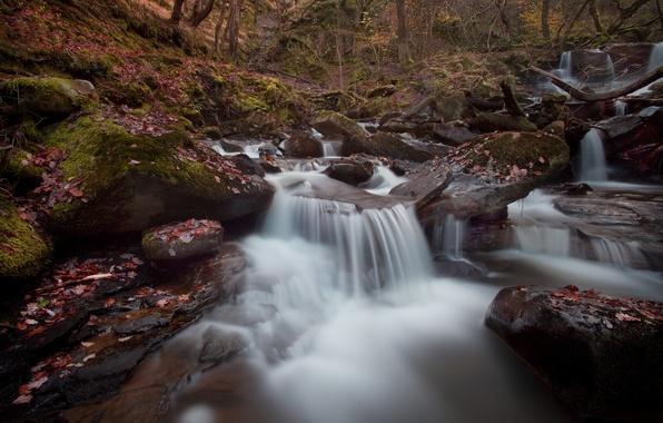 Картинка осень, лес, река, камни, каскад