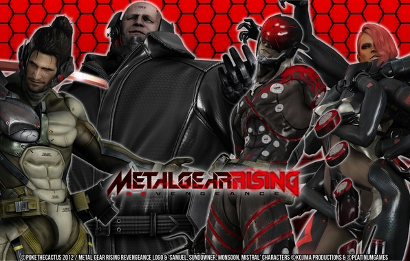 "Картинка game, Wallpaper, Metal Gear Rising, Revengeance, ""Doom"", Cyborg Ninja, Desperado Enforcement Group, Sundowner, Mystral, MGR, ..."