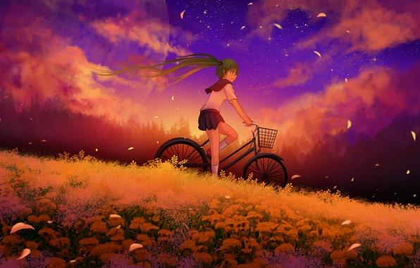 Картинка небо, девушка, облака, закат, цветы, велосипед, луна, аниме, лепестки, арт, vocaloid, hatsune miku