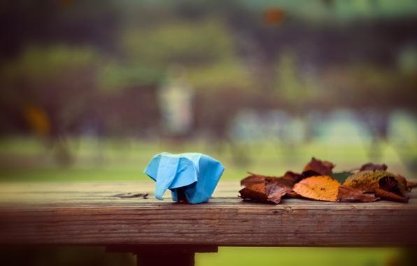 Картинка листья, бумага, слон, оригами, leaves, боке, bokeh, 2560x1600, paper, elephant, origami