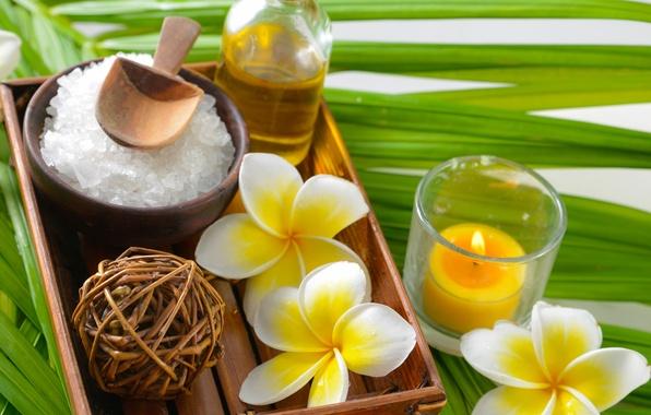 Картинка spa, salt, oil, zen, plumeria