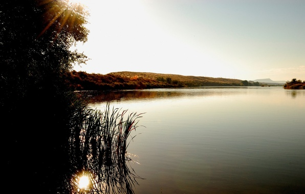 Картинка озеро, дерево, холмы, куст, лучи солнца