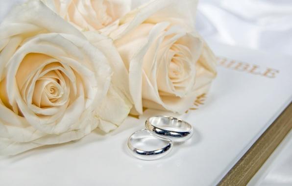 Картинка цветы, flowers, обручальные кольца, wedding rings