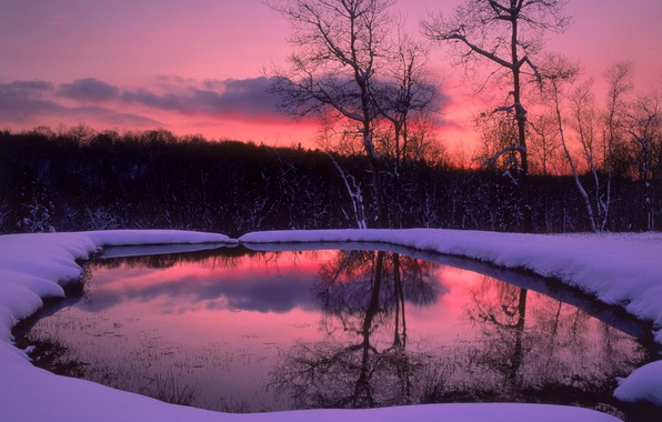 Картинка зима, лес, снег, деревья, озеро, вечер