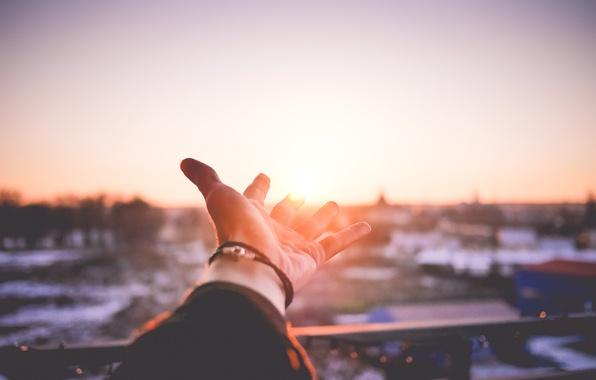 Фото обои солнце, закат, рука, ладонь