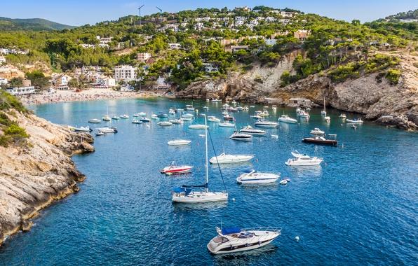 Картинка море, деревья, скалы, дома, яхты, trees, sea, rocks, bushes, кустарники