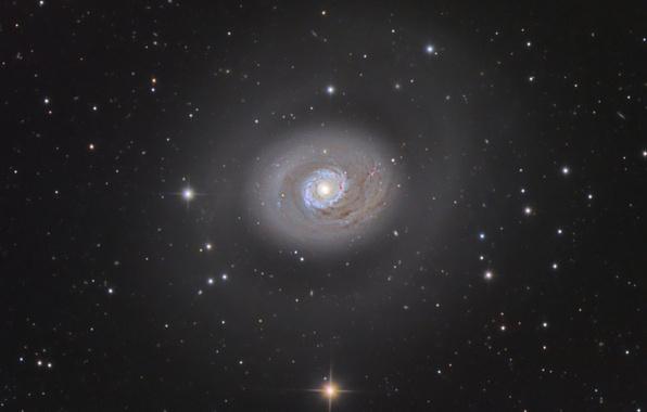 Картинка галактика, спиральная, в созвездии, Гончих Псов, M94 Galaxy
