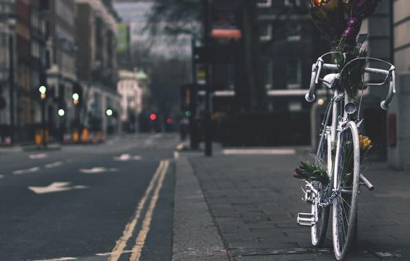 Картинка bike, flowers, street
