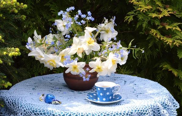 Картинка чай, букет, чашка, конфета, нарцисс, незабудка