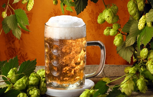 Картинка пиво, кружка, солод