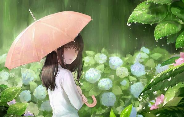 Картинка листья, капли, дождь, зонт, девочка, гортензия, sankarea