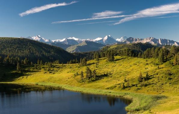 Картинка лес, деревья, горы, озеро, Швейцария, Альпы, Switzerland, Alps, Sewenseeli lake, Энтлебух, Entlebuch