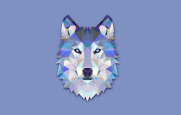 Картинка абстракция, волк, минимализм, голова, светлый фон, wolf