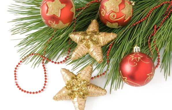 Картинка звезды, шарики, шары, игрушки, елка, ветка, Новый Год, Рождество, красные, Christmas, золотые, New Year, елочные