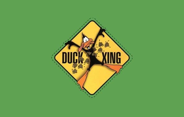 Фото обои green, минимализм, looney tunes, daffy duck