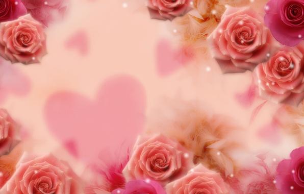 Картинка цветок, цветы, фон, сердце, розы, блестки, сердечко
