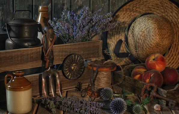 Картинка цветы, шляпа, ключ, натюрморт, персики, лаванда, катушка, бидон