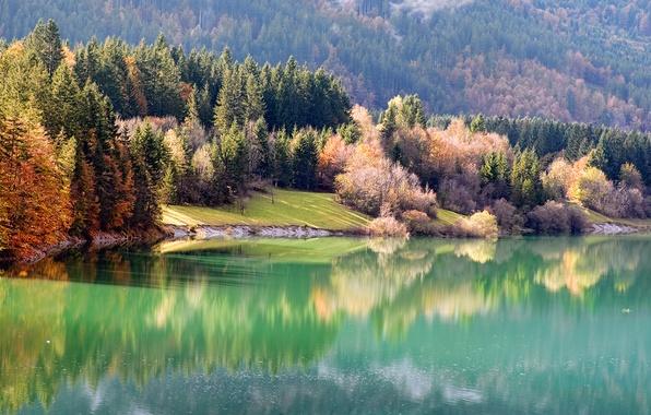 Картинка осень, лес, природа, река, берег