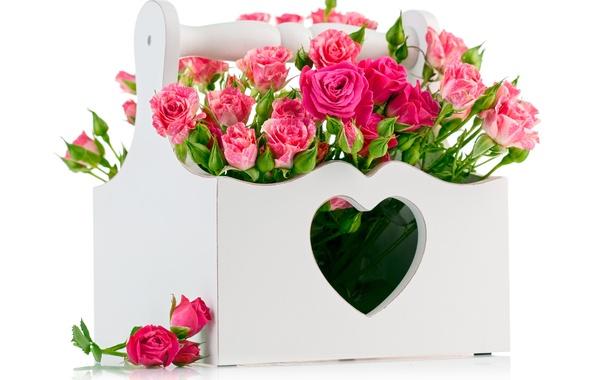 http://img1.goodfon.ru/wallpaper/big/1/5a/cvety-rozy-rozovye-rozy.jpg