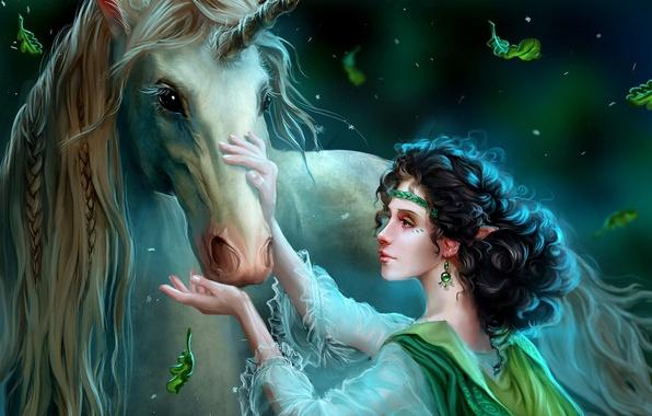 Картинка девушка, украшения, ночь, волшебство, эльф, сказка, фэнтези, арт, единорог, fantasy, art, Fairytale, elf, Wild dreamer, …