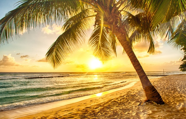 Картинка песок, море, пляж, закат, тропики, пальмы, берег, beach, sea, sunset, paradise, palms, tropical