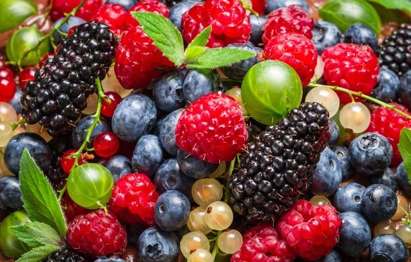 Картинка ягоды, черника, смородина, листики, ежевика, малинка