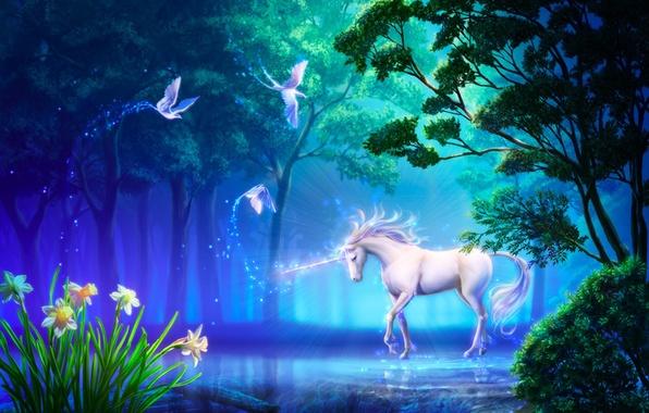 Картинка лес, цветы, птицы, озеро, конь, арт, единорог, нарциссы, takaki