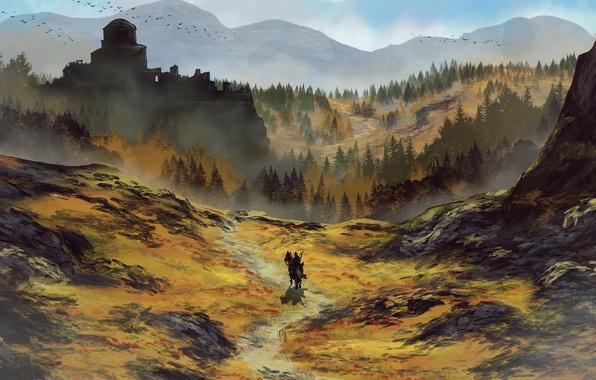 Картинка лес, пейзаж, горы, птицы, замок, конь, тропа, арт, всадник, путник