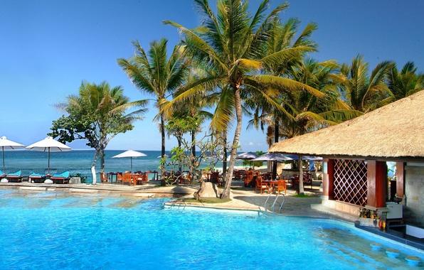 Картинка море, лето, пальмы, остров, бассейн, Бали, Индонезия, зонтики, бунгало