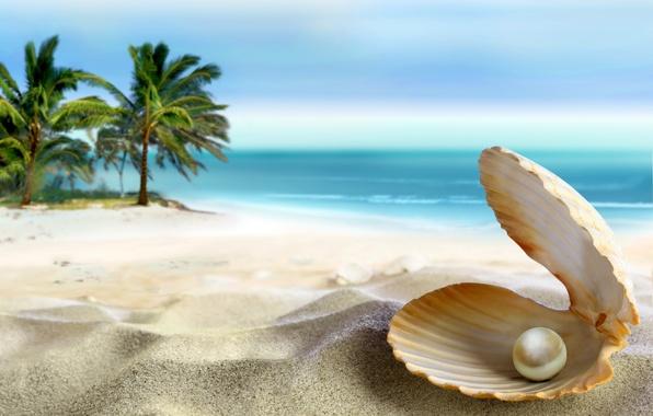 Картинка песок, море, пляж, солнце, тропики, океан, ракушка, summer, beach, sea, ocean, coast, blue, sand, paradise, …
