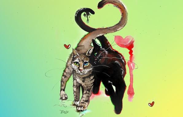 Картинка кошка, кот, усы, любовь, кошки, коты, сердце, рисунок, цвет, весна, акварель, парочка