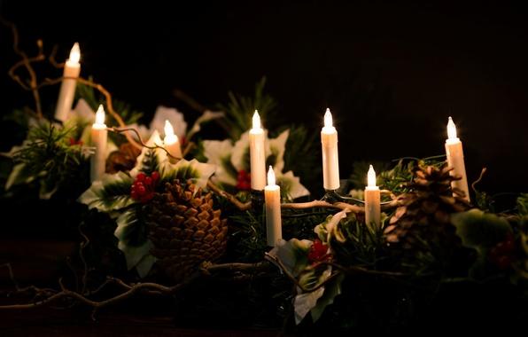 Картинка листья, огни, фон, праздник, обои, новый год, свечи, wallpaper, new year, шишка, шишки, широкоформатные, background, …