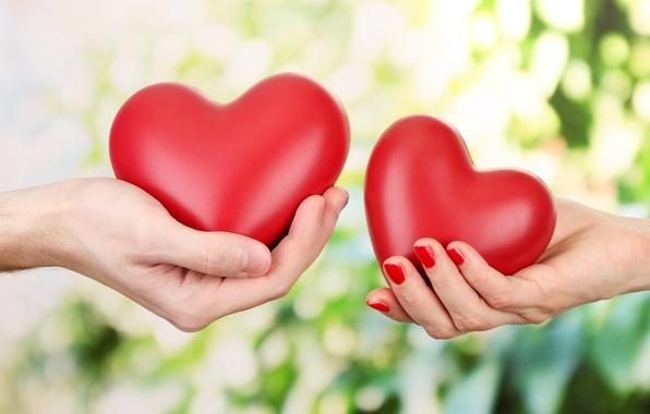 Картинка любовь, романтика, сердца, руки, love, День святого Валентина, hearts, Valentine's Day, hands, romance