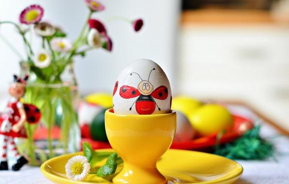 Картинка цветы, праздник, яйцо, божья коровка, пасха
