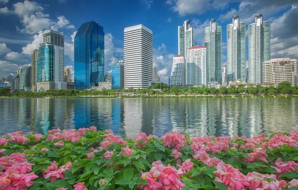 Картинка вода, цветы, здания, Таиланд, Бангкок, Thailand, набережная, небоскрёбы, Bangkok