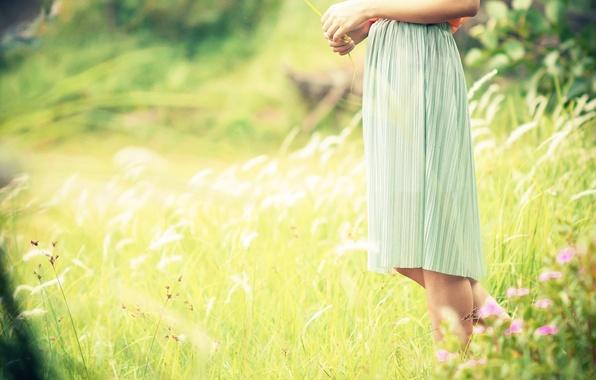 Картинка зелень, поле, трава, девушка, солнце, цветы, фон, widescreen, обои, ноги, настроения, растение, платье, wallpaper, широкоформатные, ...