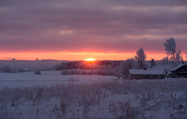 Картинка winter, snow, morning, sunrise
