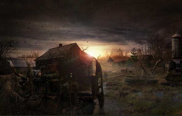 Картинка закат, рассвет, дома, собака, развалины, stalker, сталкер, зона