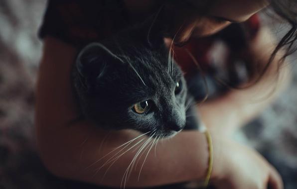 Брюнетки фото с котом
